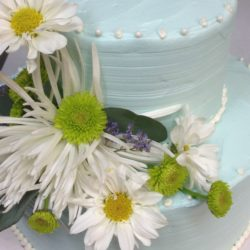 Eileens bakery and cafe cakes wedding cake blue w white flowers mightylinksfo